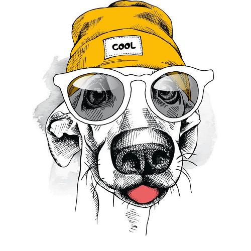 Transfert thermocollant petit modèle Chien bonnet lunette