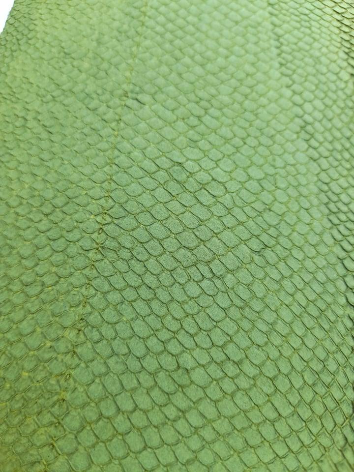 Cuir de poisson grande peau Vert